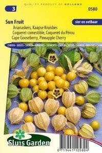 zaad ananaskers online bestellen