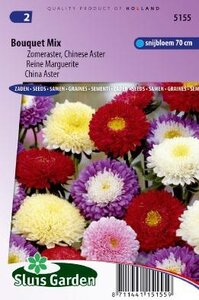 Aster chinensis - Bouquet Mix zaad bloemzaden