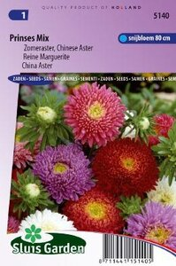 Aster chinensis - Prinses Mix zaad bloemzaden