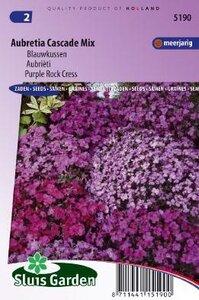 Aubretia x cultorum - Cascade Mix zaad bloemzaden