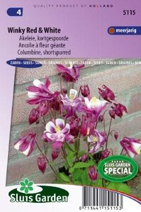 Aquilegia x hybrida -Winky Red & White zaad bloemzaden