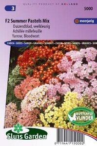 Achilea millefolium - Summer Pastels F2 Mix zaad bloemzaden
