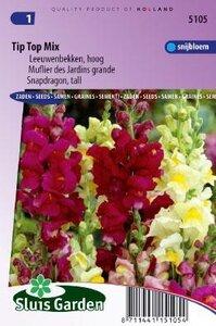 Antirrhinum majus maximum - Tip Top Mix zaad bloemzaden