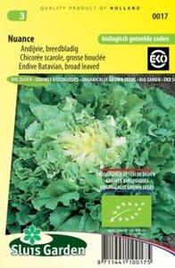Andijvie Breedblad Nuance zaad, groentezaden