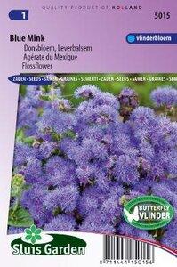 Ageratum houstonianum - Blue Mink zaad bloemzaden